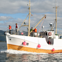 senjakyst-49-foot-on-a-summer-tour-in-the-fjord-off-hamn