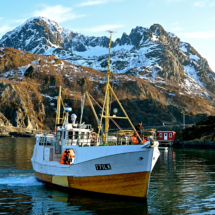 senjakyst-in-the-harbor-of-hamn-in-senja
